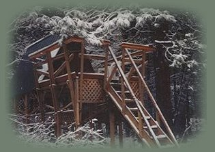 the elfin treehouse at the nature retreat in southern oregon near crater lake national park.